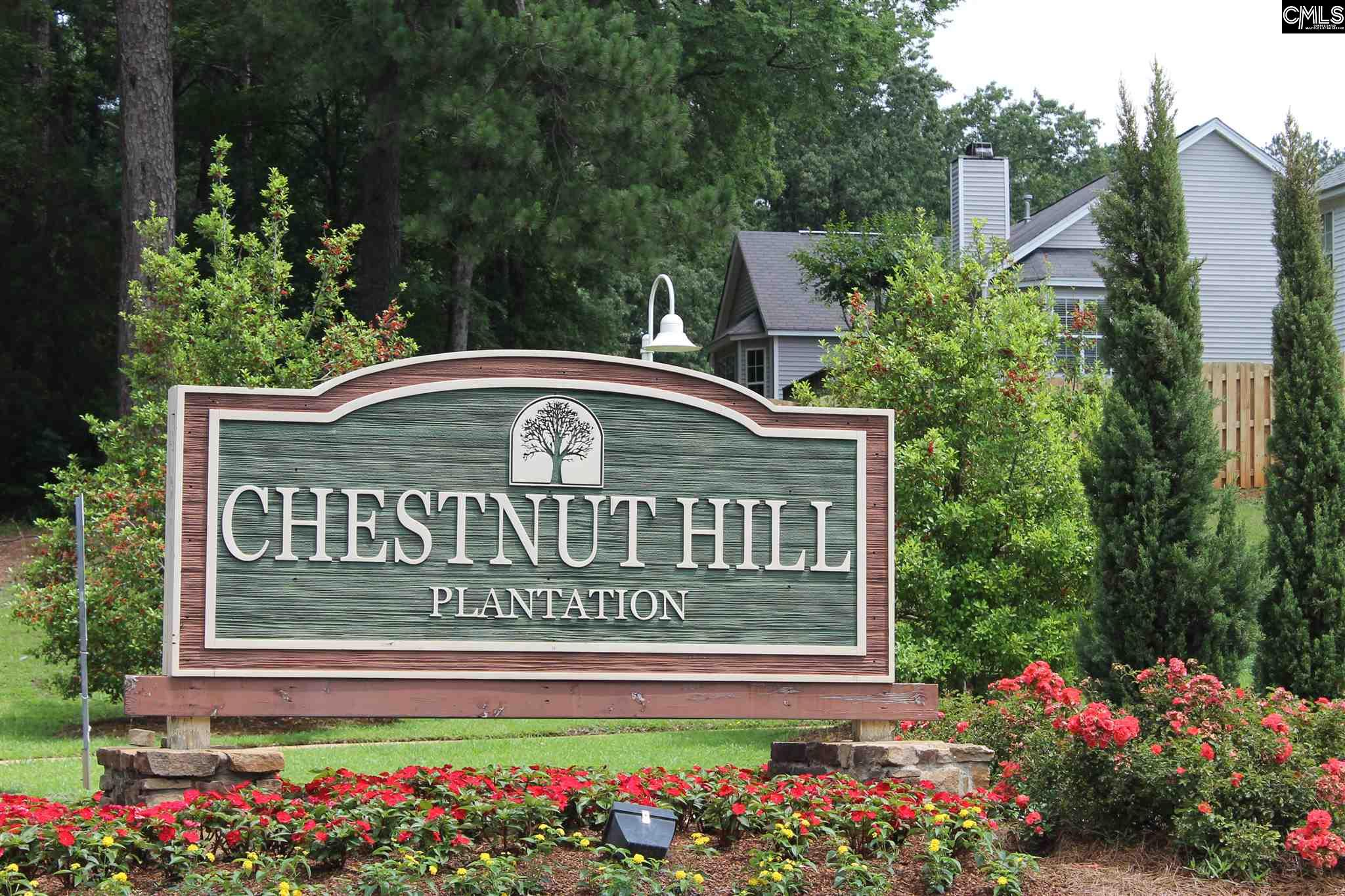 Chestnut Hill Plantation - RE/MAX CONNECTED